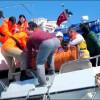 Sahil Güvenlik Komutanlığı Tanıtıcı Video 2