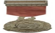 Türk Silahlı Kuvvetleri Başarı Madalyası