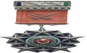 Türk Silahlı Kuvvetleri Üstün Hizmet Madalyası